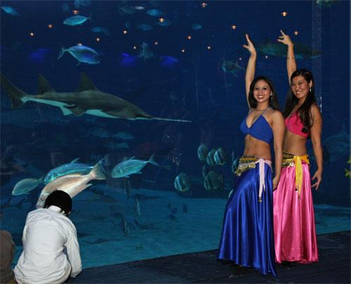 Photo Credit: Georgia Aquarium Children finally